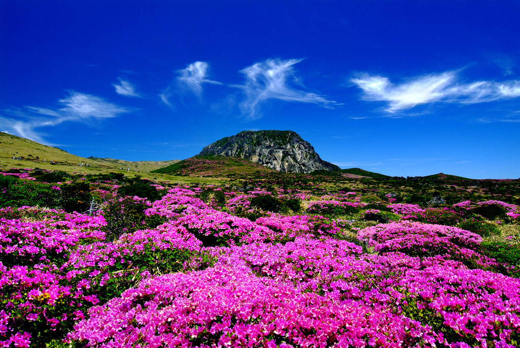 Hallasan volcano on Jeju Island, part of the busiest flight routes in the world